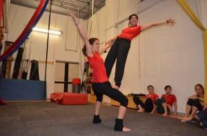 circo multidisciplinare